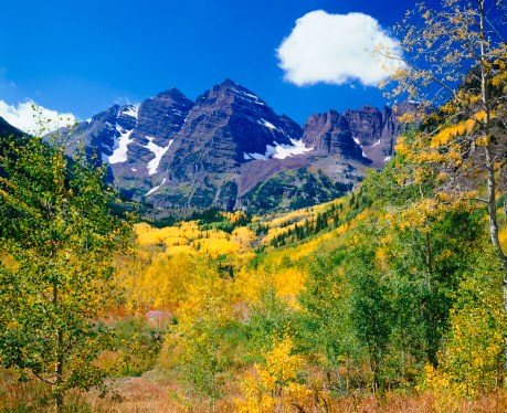 Aspen Tree「Maroon Bells With Autumn Aspen Trees」:スマホ壁紙(10)