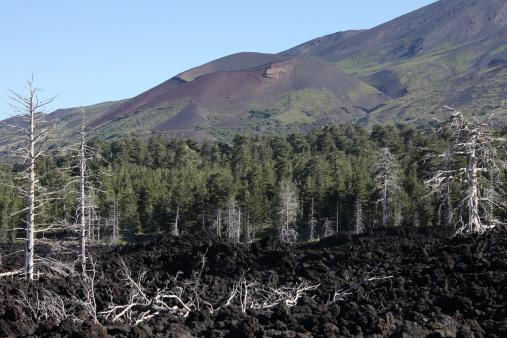 Steep「Volcanic landscape of Mount Etna.」:スマホ壁紙(5)