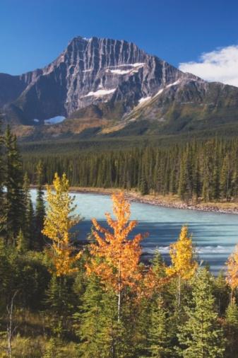 Athabasca River「Autumn By Athabasca River, Jasper National Park, Alberta, Canada」:スマホ壁紙(17)