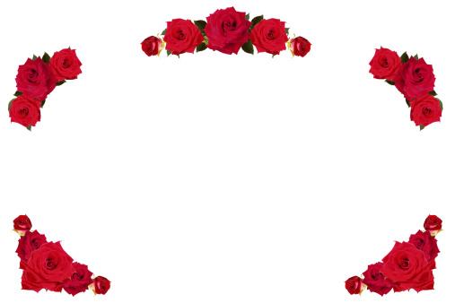Floral Pattern「Red roses frame /border XXXL+」:スマホ壁紙(0)