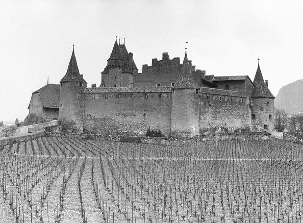 Vaud Canton「Rhone Valley Castle」:写真・画像(9)[壁紙.com]