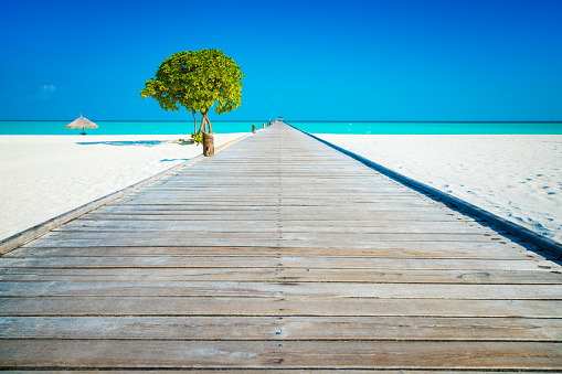 モルディブ「桟橋 Dhiffushi 休日の島、南アリ環礁、モルディブで」:スマホ壁紙(18)