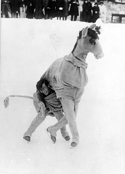 Humor「Horse On Ice」:写真・画像(14)[壁紙.com]