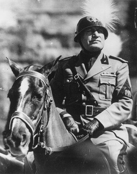 Horse「Mussolini」:写真・画像(1)[壁紙.com]