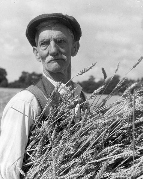 Grass Family「Rural Man」:写真・画像(7)[壁紙.com]