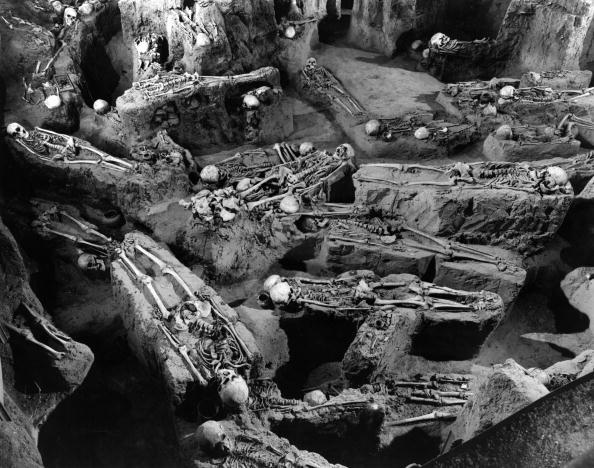Archaeology「Mass Grave」:写真・画像(4)[壁紙.com]