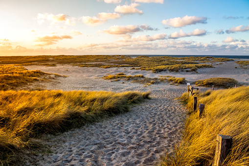 Footpath「Germany, Schleswig-Holstein, Sylt, Wenningstedt」:スマホ壁紙(3)