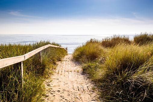 Nature Reserve「Germany, Schleswig-Holstein, Sylt, path through dunes」:スマホ壁紙(13)