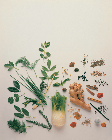 Fennel「Herbs and Spices」:スマホ壁紙(12)