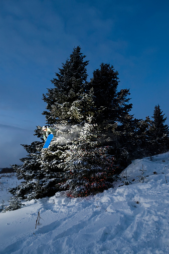 スノーボード「A Blue Snowboard Resting In A Snow Covered Pine Tree In Winter」:スマホ壁紙(7)