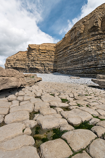 Limestone「UK, Wales, Dunraven Bay, Limestone formations at low tide」:スマホ壁紙(2)