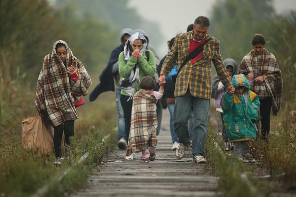 Europe「Migrants Make Their Way Towards Hungary」:写真・画像(7)[壁紙.com]