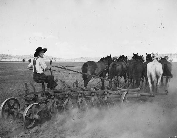 Plowed Field「Plough Girl」:写真・画像(12)[壁紙.com]
