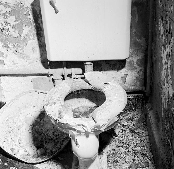 Toilet「Toilet Bowl」:写真・画像(2)[壁紙.com]