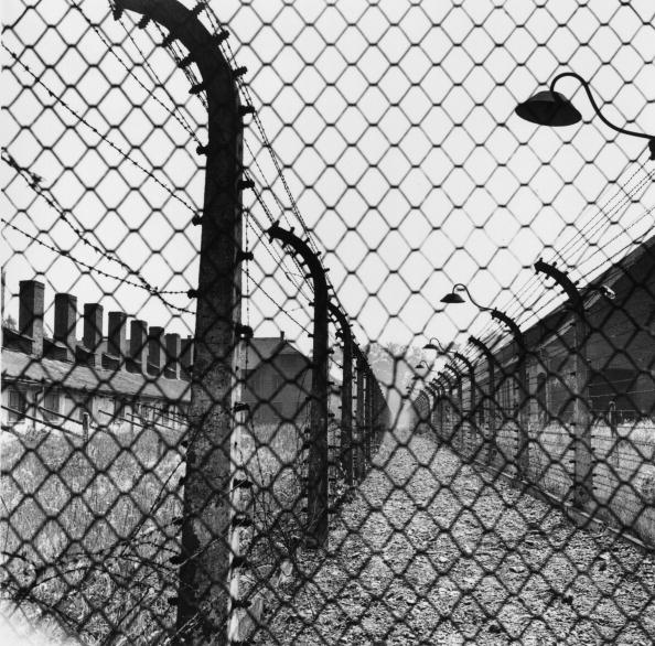 Barbed Wire「Confining Fence」:写真・画像(3)[壁紙.com]