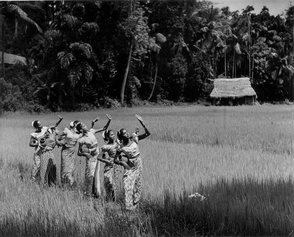 Sri Lanka「Harvest Dance」:写真・画像(7)[壁紙.com]