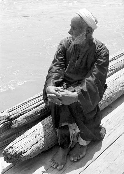 Riverbank「Nile Dweller」:写真・画像(2)[壁紙.com]