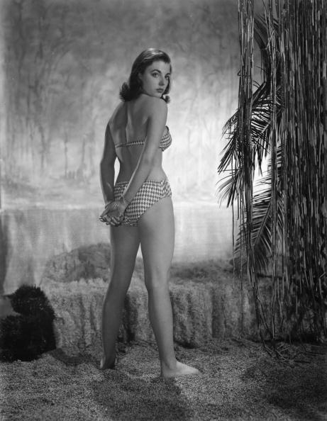 Photo Shoot「Joan Collins」:写真・画像(18)[壁紙.com]