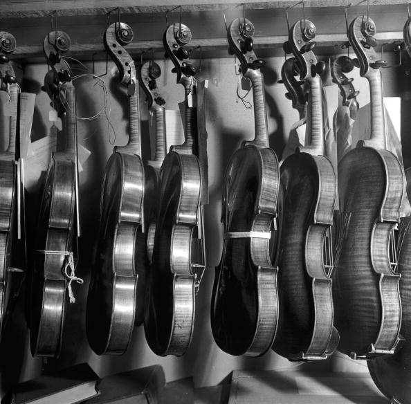 Violin「Violins」:写真・画像(11)[壁紙.com]