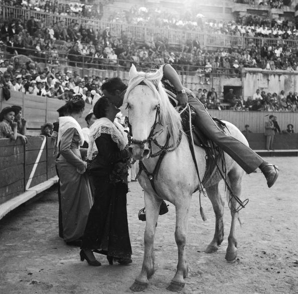 Camargue「Rodeo Winner」:写真・画像(11)[壁紙.com]