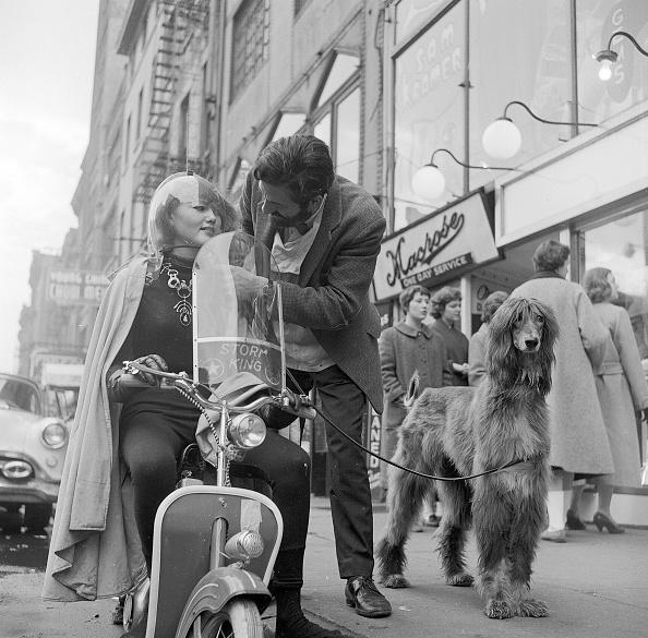 Greenwich Village「Moped Farewell」:写真・画像(13)[壁紙.com]