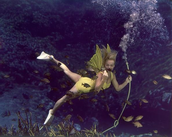 水中写真「Underwater Beauty」:写真・画像(12)[壁紙.com]