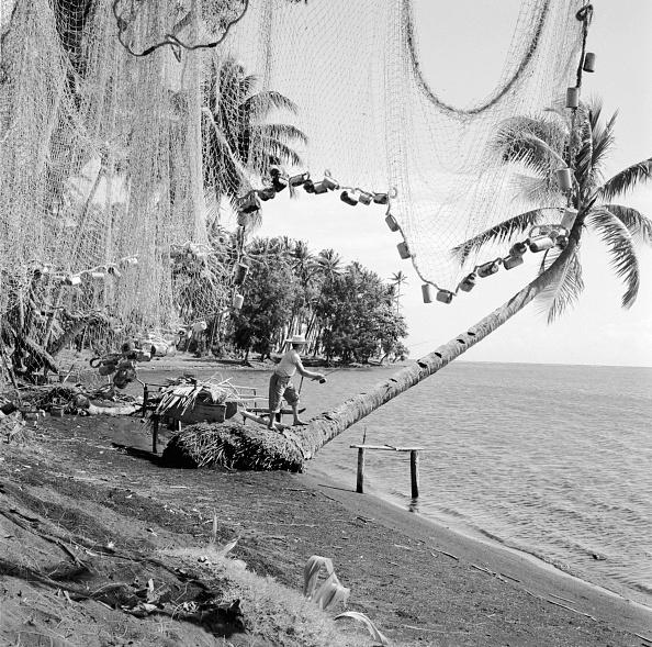 南国「Fishing In Paradise」:写真・画像(19)[壁紙.com]