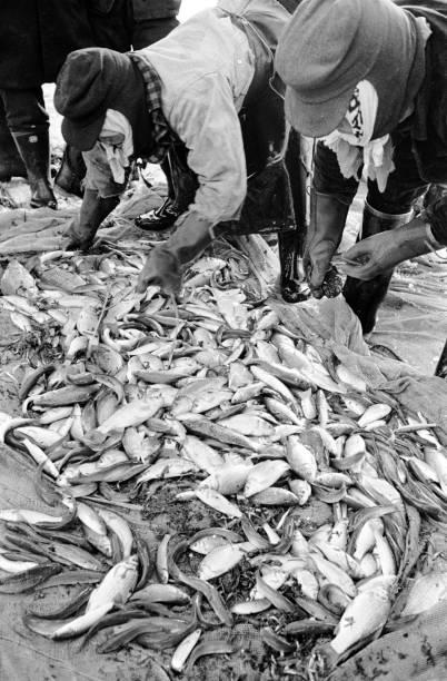 Japanese Fishermen:ニュース(壁紙.com)
