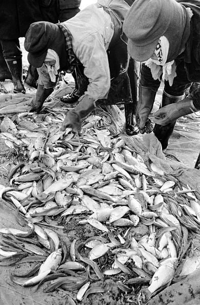 Japan「Japanese Fishermen」:写真・画像(16)[壁紙.com]