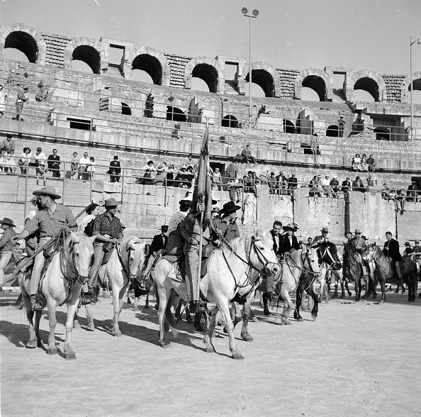 Camargue「French Cowboys」:写真・画像(12)[壁紙.com]