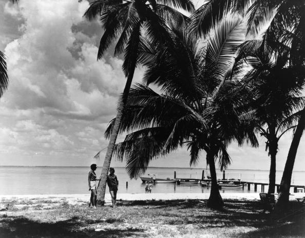 南国「Holiday Resort」:写真・画像(9)[壁紙.com]