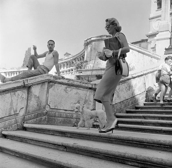 Rome - Italy「Tourist's Dog」:写真・画像(14)[壁紙.com]
