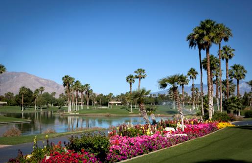 Water Hazard「Plam Springs Golf Course」:スマホ壁紙(2)
