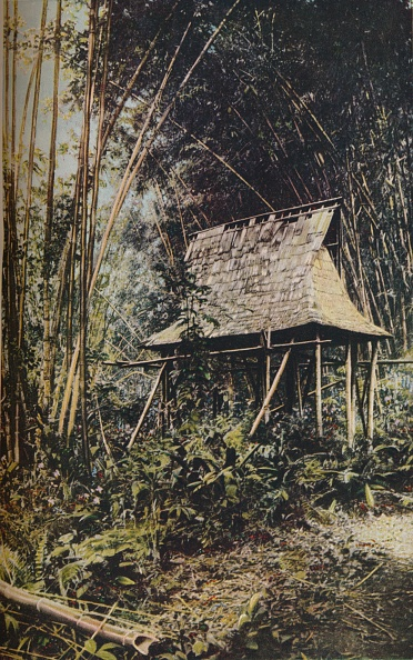 Grove「Philippine Islands」:写真・画像(12)[壁紙.com]