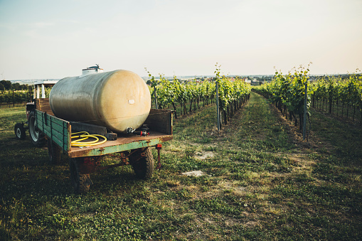 Insecticide「Austria, Weinviertel, tractor with tank of pesticide parking at vineyard」:スマホ壁紙(14)