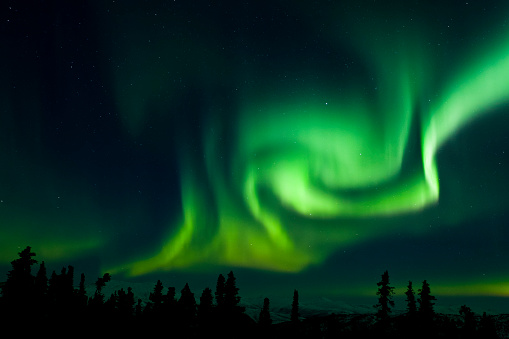 Boreal Forest「The bright neon green aurora swirling above the boreal forest, Chena River State Recreation Area」:スマホ壁紙(18)