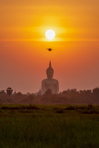 Buddha statue「Huge Buddha image at sunset in the landscape in Angthong Province, Thailand.」:スマホ壁紙(19)