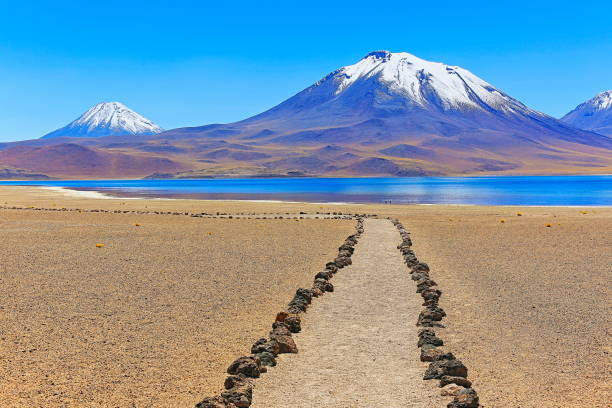 trekking trail path to Lagunas Miñiques and Miscanti - Lakes and snowcapped Volcanoes mountains - Turquoise lakes and Idyllic Atacama Desert, Volcanic landscape panorama – San Pedro de Atacama, Chile, Bolívia and Argentina border:スマホ壁紙(壁紙.com)