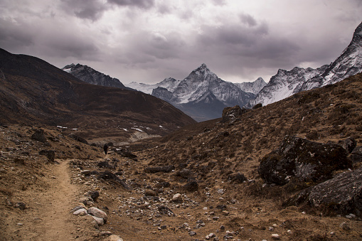 Khumbu「Trekking trail near Dzongla with Himalayan peaks behind, Everest Base Camp via Gokyo Trek, Nepal」:スマホ壁紙(1)