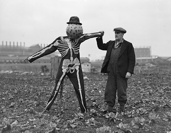 Showing Off「Road Safety Scarecrow」:写真・画像(9)[壁紙.com]