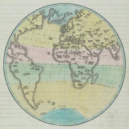 Latitude「Map of the world」:スマホ壁紙(19)