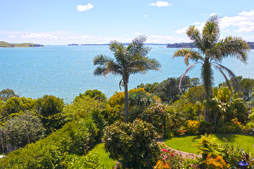 The Nature Conservancy「Sea view in Auckland New Zealand」:スマホ壁紙(6)