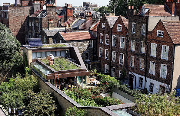 Rooftop「Urban Beekeeping On East London Rooftops」:写真・画像(10)[壁紙.com]
