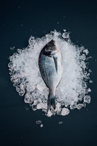 シリーズ画像「鯛オンアイスシーフード静物」:スマホ壁紙(0)