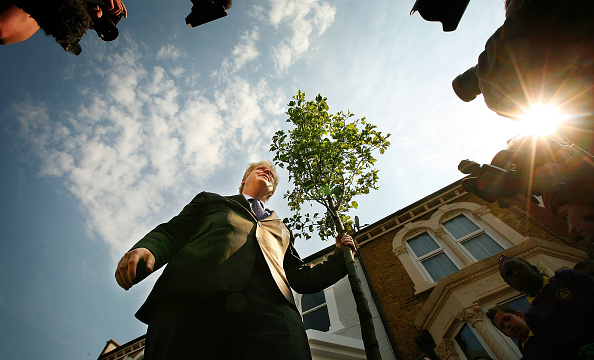 Tree「Boris Johnson Plants The First Of Ten Thousand More Street Trees」:写真・画像(9)[壁紙.com]