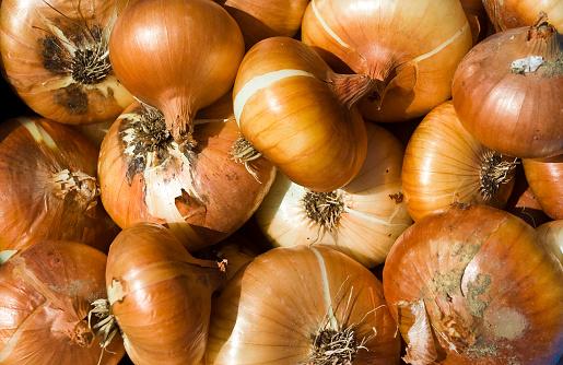 Onion「Onions」:スマホ壁紙(2)