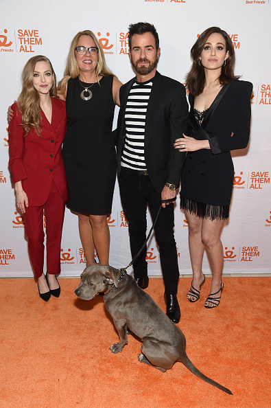 Amanda Seyfried「Best Friends Benefit To Save Them All」:写真・画像(13)[壁紙.com]
