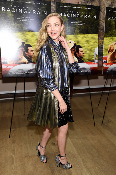 "Amanda Seyfried「""The Art Of Racing In The Rain"" New York Premiere」:写真・画像(19)[壁紙.com]"