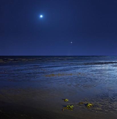 三日月形「Venus shines brightly below the crescent Moon as seen from coast of Buenos Aires, Argentina.」:スマホ壁紙(13)