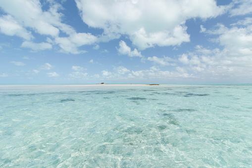 Shallow「South Andros, Bahamas」:スマホ壁紙(10)